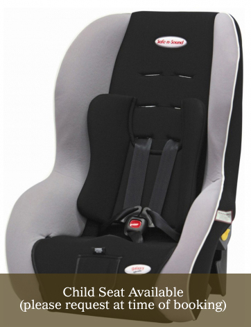 PageLines-child_seat.jpg